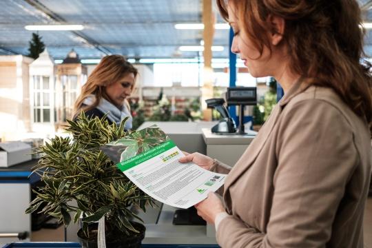 Stampa schede botaniche