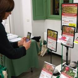 Emanuela Rosa-Clot prova Botanica on Web