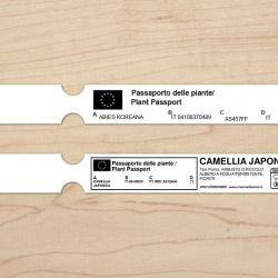 Etichette ad asola