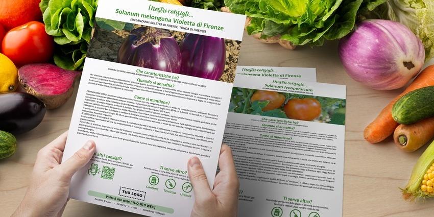 Nuove schede botaniche di piante da orto per Botanica on Web!