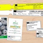 Passaporto delle piante: una soluzione facile per essere in regola!