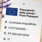Sei pronto per il nuovo passaporto delle piante?